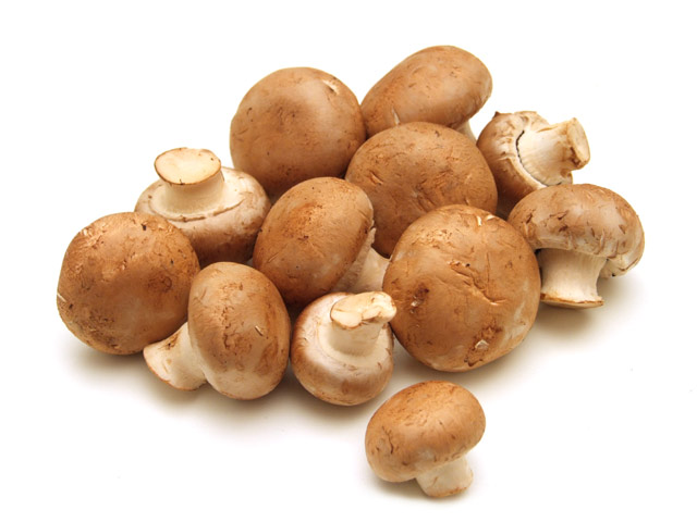 braun champignons
