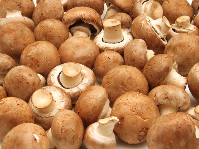 champignons braun