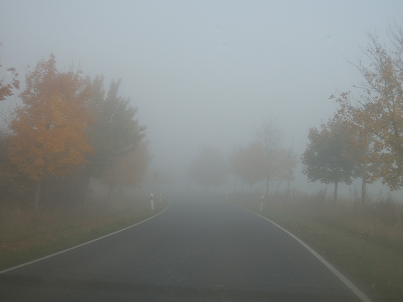 Herbst – Nebel auf der Straße