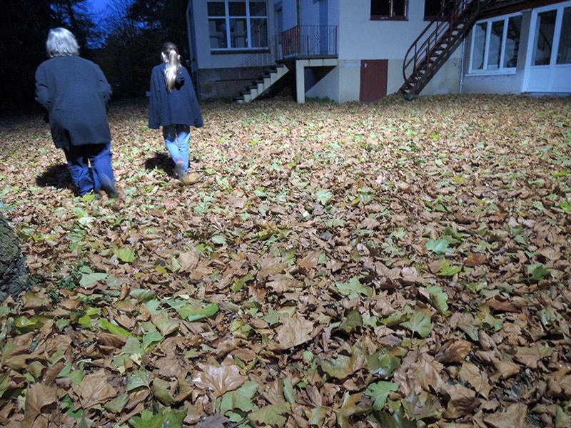 Herbst in Hildesheim – Blätter