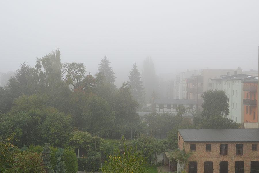 Herbstanfang 2017: Nebel im Hinterhof