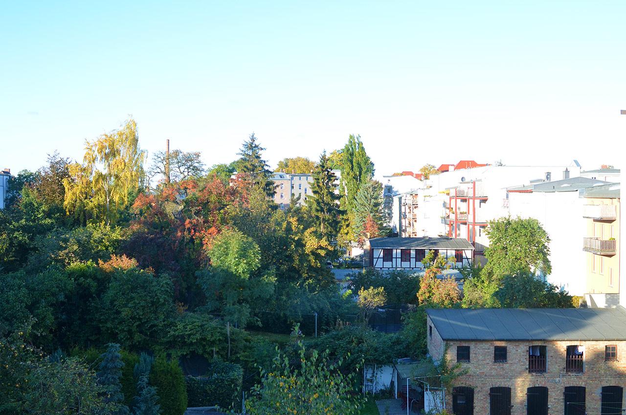 Schwerin Hinterhof – Anfang Oktober