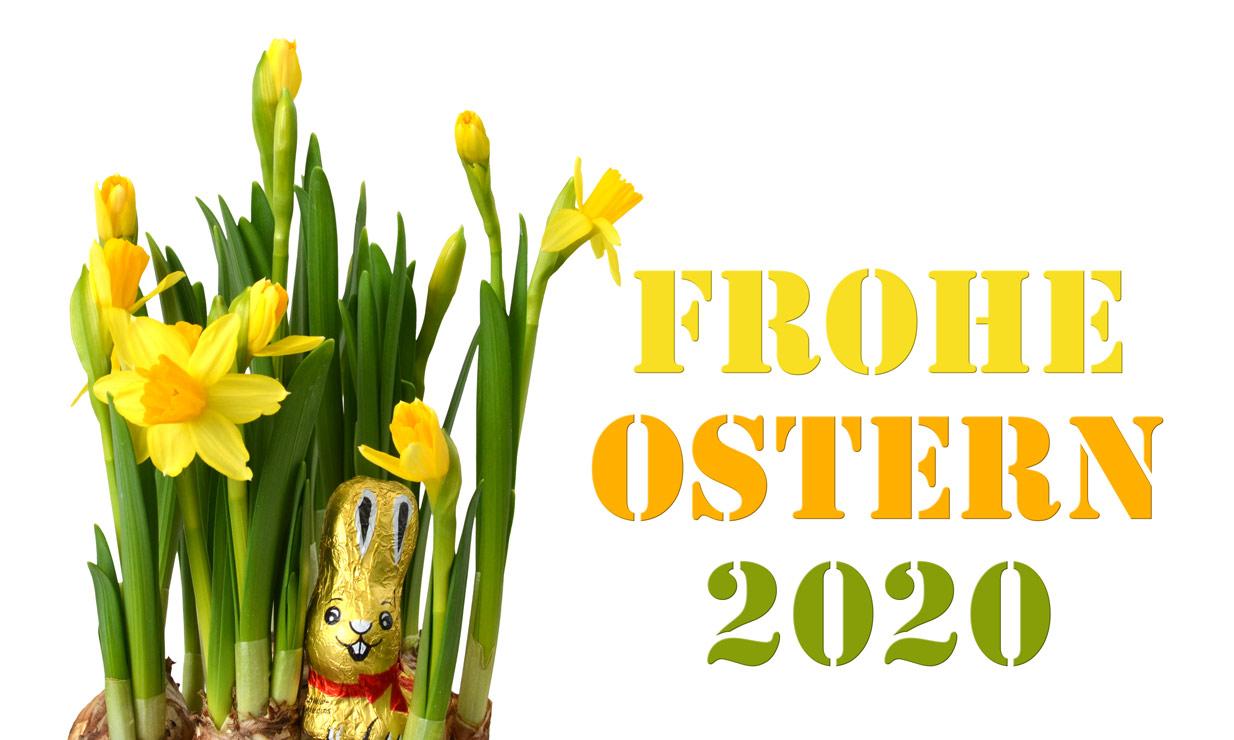 Frohe Ostern 2020 mit Osterglocken und Osterhase